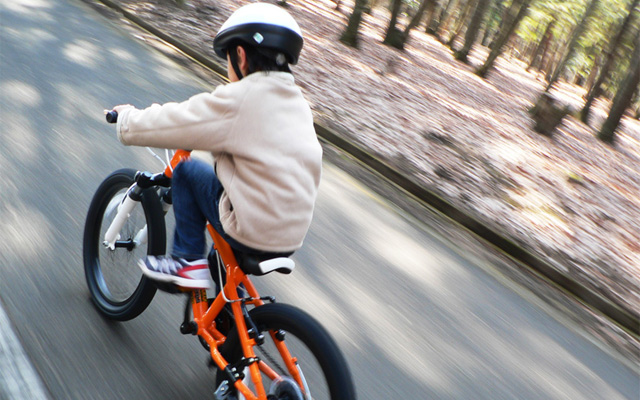 Bicycle Insurance Header