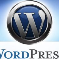 WordPress(Wordpress)抢眼